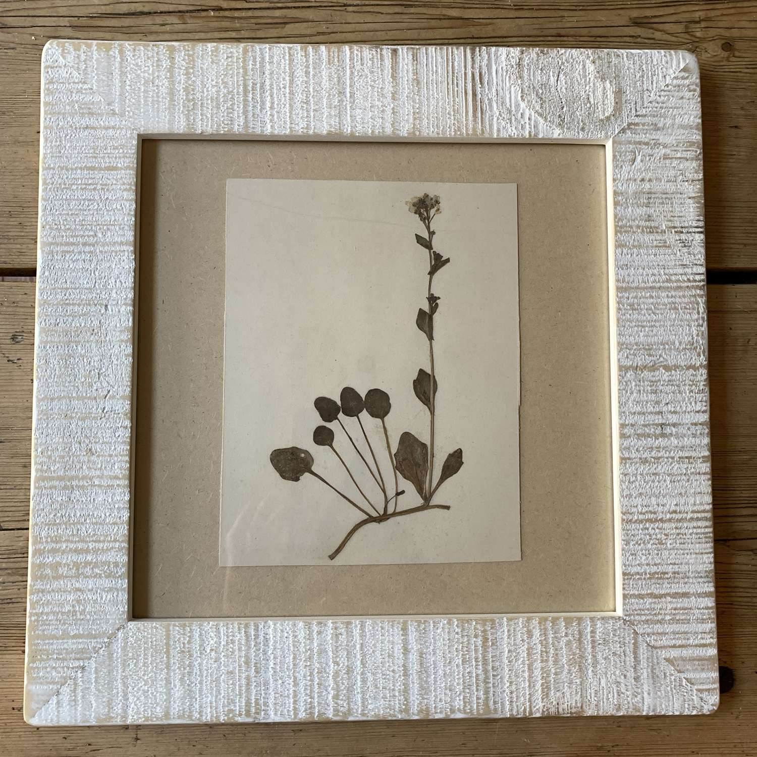 Antique herbiere in reclaimed wooden frame